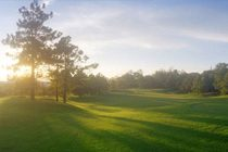 course-dalat-place-golf-club-icon